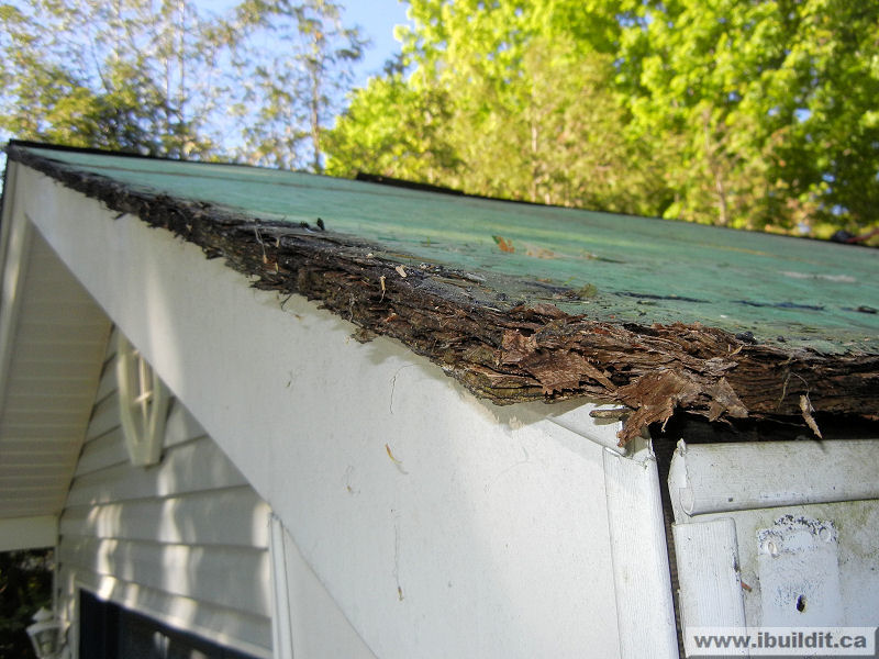 exposed and deteriorated edge of sheathing
